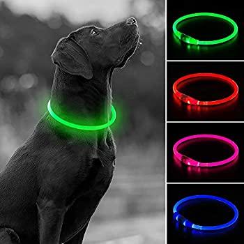 cool-dog-collars