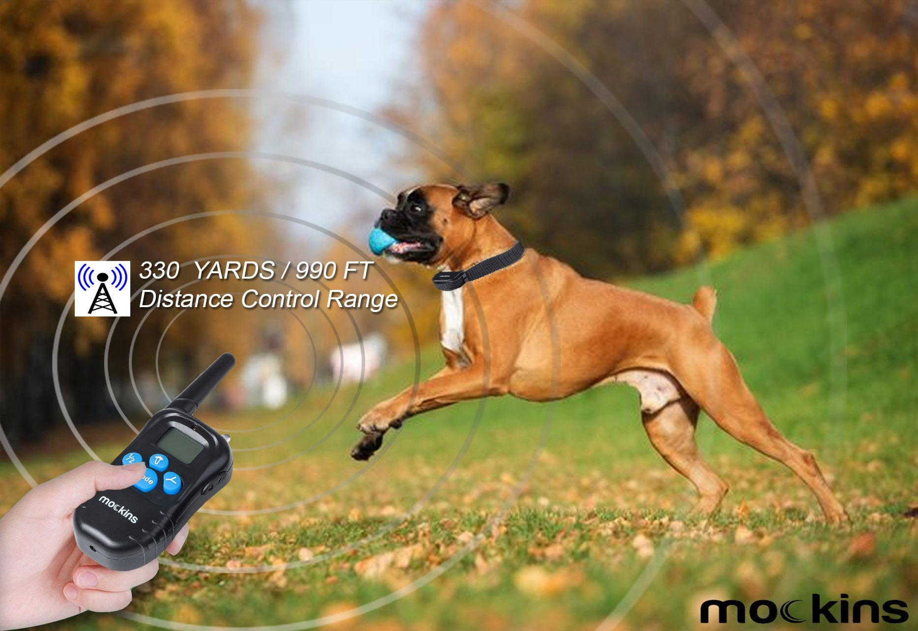 dog-training-collars