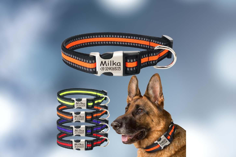 dog-collar-with-name