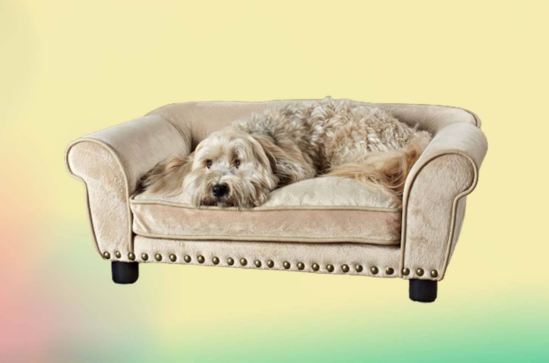 luxury-dog-beds