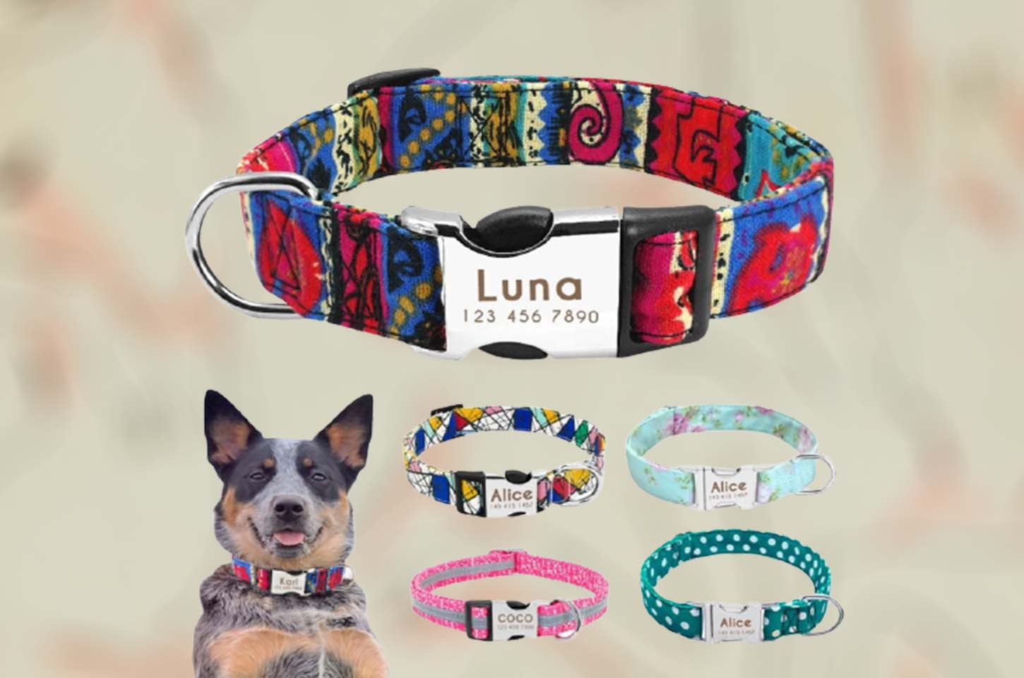personalized-dog-collars