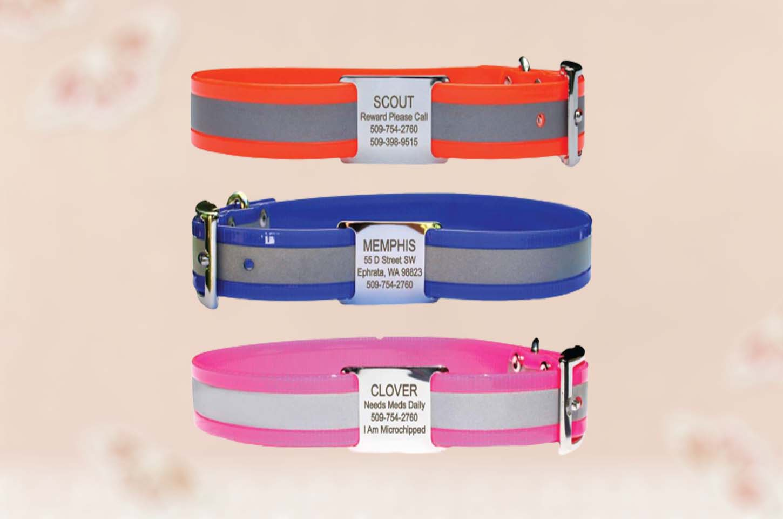waterproof-dog-collars