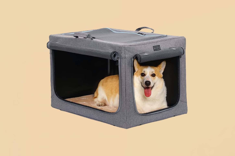 medium-dog-crate