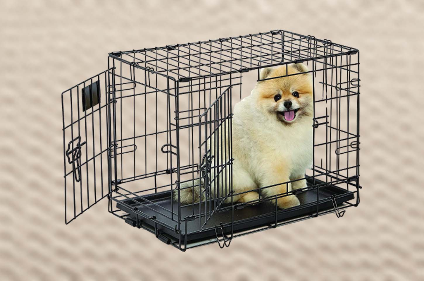 small-dog-crate